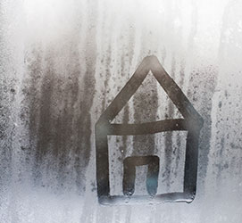 Home survey condensation