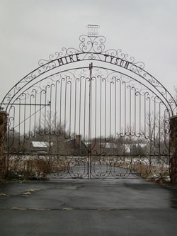 Mike Tyson Gate