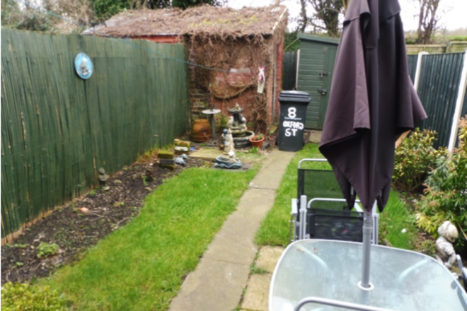 garden with shed and umbrella