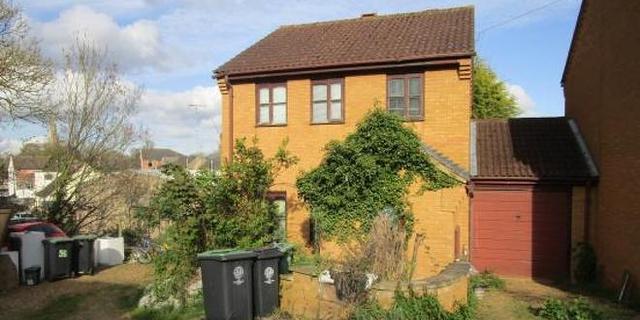 House with an overgrown garden